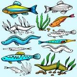 Seaworld illustration series Stock Photo