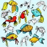 Seaworld illustration series Royalty Free Stock Photo