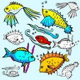 Seaworld illustration series stock illustration