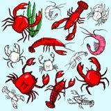 Seaworld illustration series Royalty Free Stock Photos