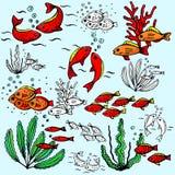 Seaworld illustration series Stock Photography