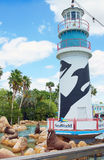 SeaWorld Orlando, Florida Royalty Free Stock Image