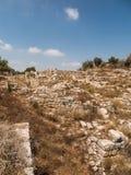 Sebastia、古老以色列、废墟和挖掘 免版税库存图片