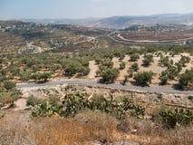 Sebastian, oud Israël, ruïnes en uitgravingen royalty-vrije stock foto's