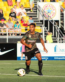 Sebastien Thuriere, Midfielder, Charleston Battery. Charleston Battery midfielder Sebastien Thuriere #8 Royalty Free Stock Photos