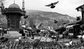 The Sebilj wooden fountain (Sebil) in the centre of Baščaršija square in Sarajevo. Pigeons fly around the Sebilj, a pseudo-Ottoman style wooden fountain ( Royalty Free Stock Photos