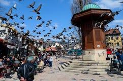 木无背长椅Sebilj喷泉在萨拉热窝Bascarsija波斯尼亚 免版税库存照片