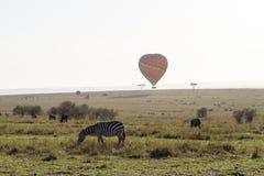 Sebra och varm ballon i Kenya royaltyfri fotografi