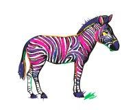 Sebradjur i regnbågefärgband som isoleras på vit royaltyfri illustrationer