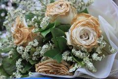 Sec blanc s'est levé après le Saint Valentin, fané s'est levé Images stock