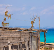 Sec Peix рыба высушенная ветром типичная от Балеарских островов Стоковое Фото