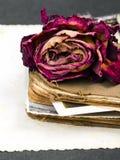 Sec se sont levés, le vieux livre et la photographie vide Image stock