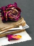 Sec se sont levés, le vieux livre et la photographie vide Images stock