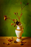 Sec vers le haut de la rose de jaune Photo libre de droits