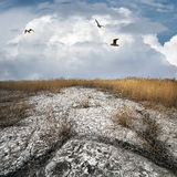 Sec vers le haut de la terre de vieux collieriy de Gorlovka Images libres de droits