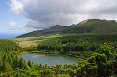 Seca湖, Pico海岛,亚速尔群岛 免版税库存照片