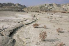 Seca, solos áridos Imagem de Stock