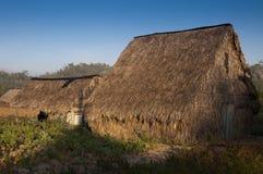 Secadero - alloggi per l'essiccamento del tabacco Fotografia Stock