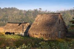 Secadero - alloggi per l'essiccamento del tabacco Fotografia Stock Libera da Diritti