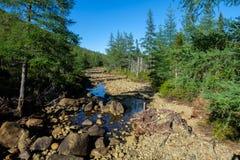 Secado acima do riverbed Imagens de Stock Royalty Free