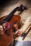 Secado aumentou sobre um violino velho fotografia de stock