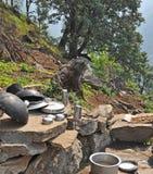 Secado de los utensilios de la cocina en la India rural Fotografía de archivo libre de regalías