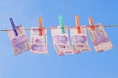 Secado del dinero lavado planchado Foto de archivo libre de regalías