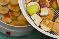 Secador de la fruta con los pedazos de la manzana Fotografía de archivo