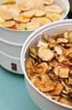 Secador de la fruta con los pedazos de la manzana Imágenes de archivo libres de regalías