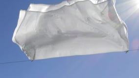 Secagem branca da folha