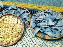 Secagem da aleta do tubarão no Sun - o Macau Imagem de Stock