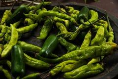 Secagem das pimentas Imagem de Stock