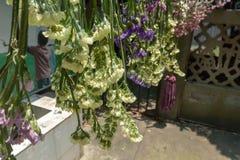 A secagem do vento é uma maneira de fazer flores secas imagem de stock royalty free