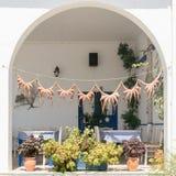 Secagem grega tradicional do polvo do alimento no sol Fotografia de Stock Royalty Free