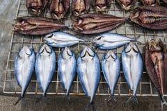 Secagem secada tradicional dos peixes em cremalheiras Imagens de Stock Royalty Free