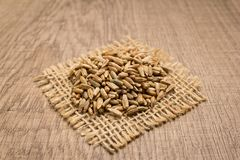 Rye cereal grain. Grains on square cutout of jute. Wooden table. Stock Image