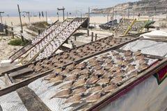 Secando e vendendo peixes em Nazare imagens de stock
