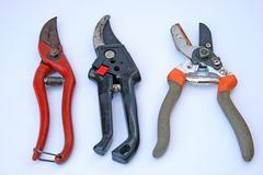 Secateurs Stock Image