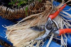 Secateurs, raffia and Calluna. Binding material for plant care Stock Photo