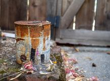 Secchio arrugginito e inutilizzato della pittura che si siede nelle ragnatele in un cortile fotografie stock libere da diritti