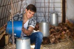 Secchio della tenuta dell'agricoltore con il foraggio del pollo Fotografia Stock