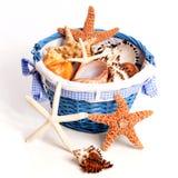 Secchio delle conchiglie e delle stelle marine Fotografie Stock