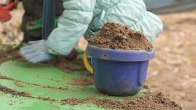 Secchio di riempimento del bambino con la sabbia sulla tavola in sabbiera stock footage