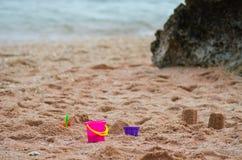 Secchio di rosa di bambino Fotografie Stock