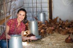 Secchio femminile della tenuta dell'agricoltore con foraggio Fotografie Stock