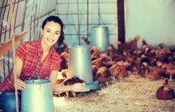 Secchio femminile della tenuta dell'agricoltore con foraggio immagine stock libera da diritti
