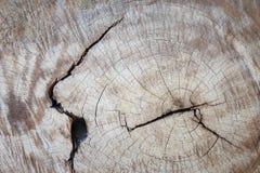 Sección agrietada de la textura de madera para el fondo Imagen de archivo libre de regalías