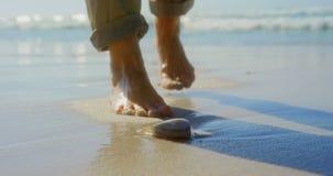 Sección baja de la mujer mayor activa que coge la concha marina en la playa 4k almacen de video