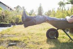 Sección baja del hombre que se relaja en carretilla en el jardín Foto de archivo