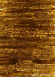 Sección de madera microscópica Fotos de archivo libres de regalías